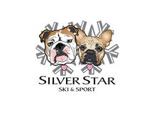 Silver Star Ski and Sport