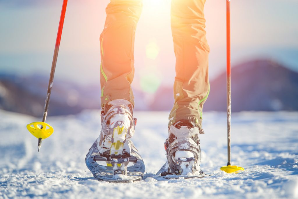Skis with hard snow baskets are best for flatter surfaces like cross-country trails.